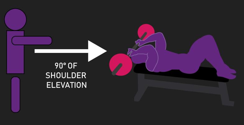 triceps skull crusher