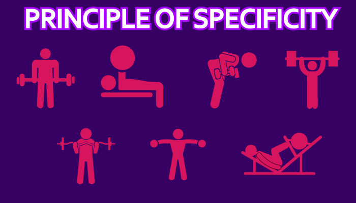 the principle of specificity