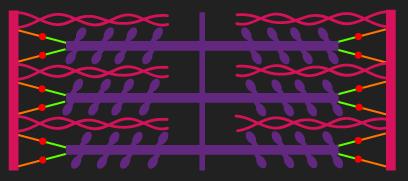 optimal length sarcomere