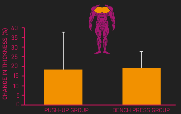 bench press vs push-up for chest growth