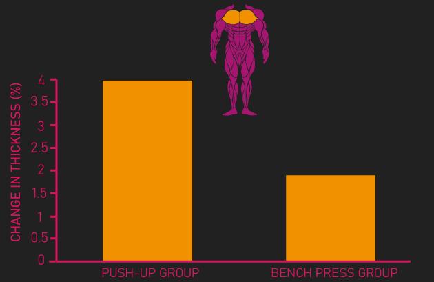 bench press vs push-up for pectoralis major