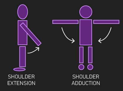 shoulder extension and adduction
