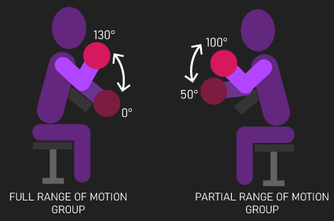 full range of motion and partial curls